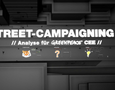 Greenpeace // Street campaigning
